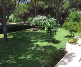Apartment in Principina a Mare Grosseto 36205