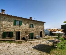 Lush Farmhouse in Caprese Michelangelo with BBQ