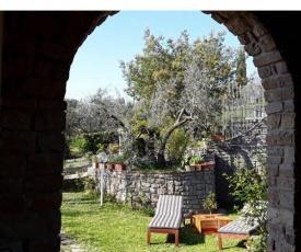 La collina degli olivi