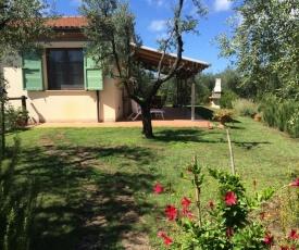 Casa Rosina Cecina Toscana Tour