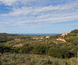Toscana Mare/Collina Castagnaeto Carducci