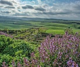 Agriturismo Le Tassinaie