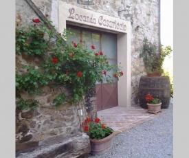 Casa Dalia - Agriturismo Casariccio