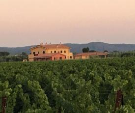 Domus Tuscany