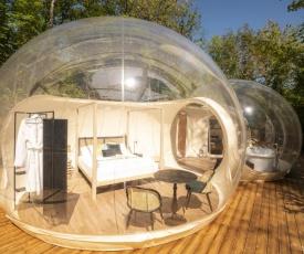 Ursa Major Bubble